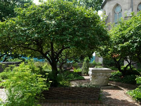View of the Bonnefont Cloister at the Cloisters Museum and Gardens