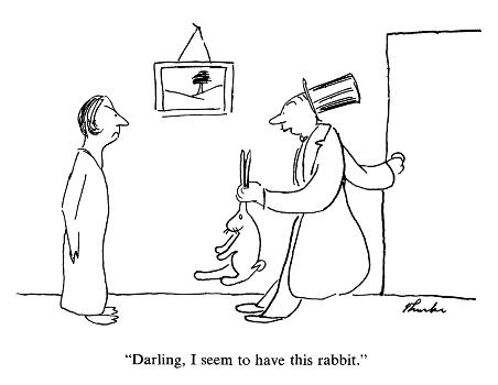 """Darling, I seem to have this rabbit."""