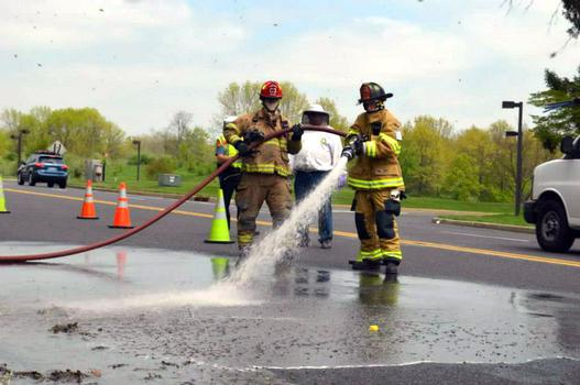 Firefighters hosing dead bees off the roadway