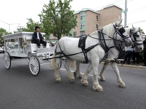 A horse-drawn glass carriage transported D'aja's casket.