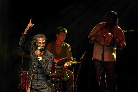 Afrobeat band Antibalas performs in the BAM Howard Gilman Opera House on the second day of the 2013 Crossing Brooklyn Ferry festival.