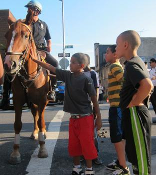 Petting the 46th precinct's police horses - a popular draw for kids.