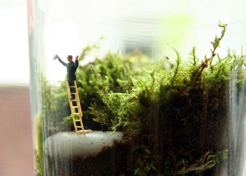 Under the Dome: no need to clean the terrarium's glass with this little window washer.