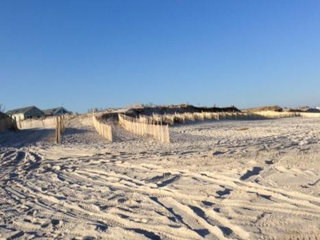 Tall dunes on Midway Beach, New Jersey