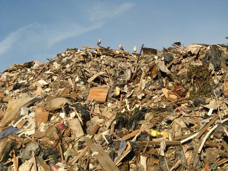 Environmentalists say much of what is sent to landfills could be salvaged and re-used.