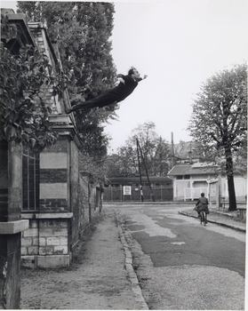 Yves Klein (French, 1928–1962) photographed by Harry Shunk (German, 1924–2006) and János (Jean) Kender (Hungarian, 1937–2009). Leap into the Void