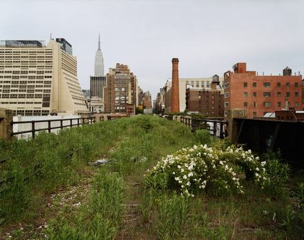 The High Line, looking East on 30th Street on a morning in May, 2000