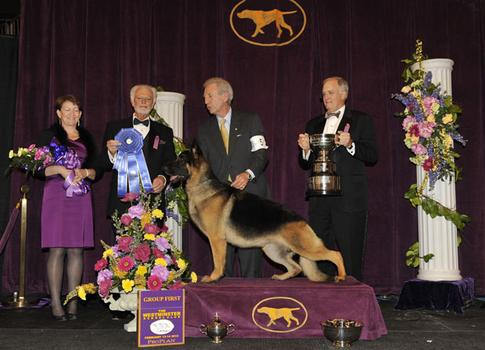 2012 Herding Group Winner