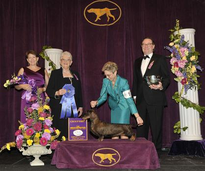 2012 Hound Group Winner