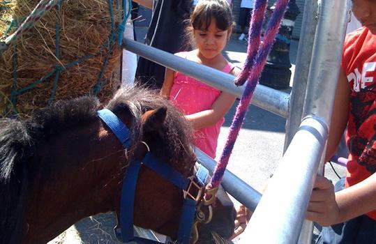 Pony ride at Dyckman Street fair.