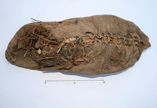 The perfectly preserved 5,500 year old shoe