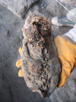 The preserved  5,500 year old shoe