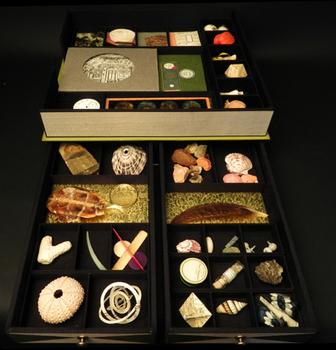 Barbara Hodgson's specialty art book holds shells, feathers, engravings and other artifacts.