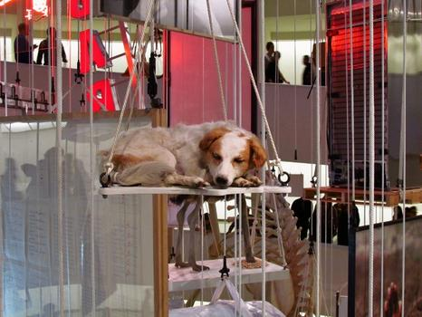 There were snoozing taxidermy dogs everywhere. This one is titled 'Stone dead' and is from 1997. Rich people actually buy this stuff.