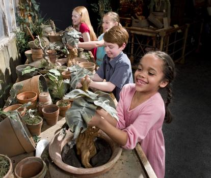 Kids pull mandrakes out of pots in the exhibit's herbology area.