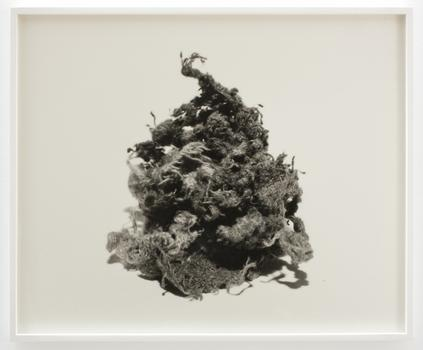 An untitled print by N. Dash from 2012, also part of the abstraction show at James Cohan.