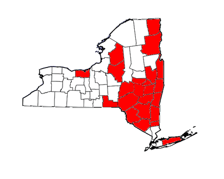 Counties for which Cuomo requested disaster relief.