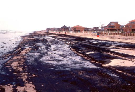 Oil on the beaches of Galveston, Texas after the 1984 Alvenus oil spill off the coast of Texas.