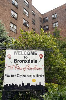 The Bronxdale Housing Project--where Sotomayor grew up