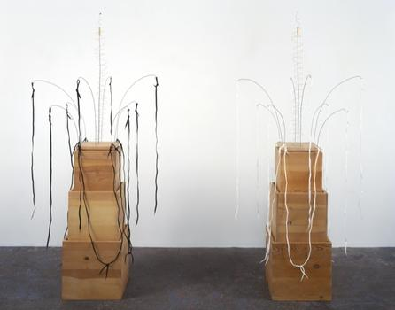 Wurtz is obsessed with things we overlook or discard and chooses to display objects for what they are, rather than what they could be transformed into. Shown here: a shoelace piece from 2001.