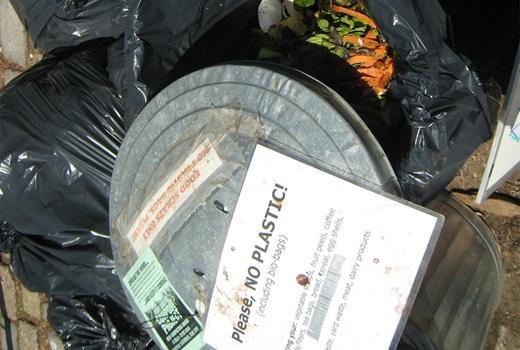 Signs alert contributors against dumping plastic, meat or bones.