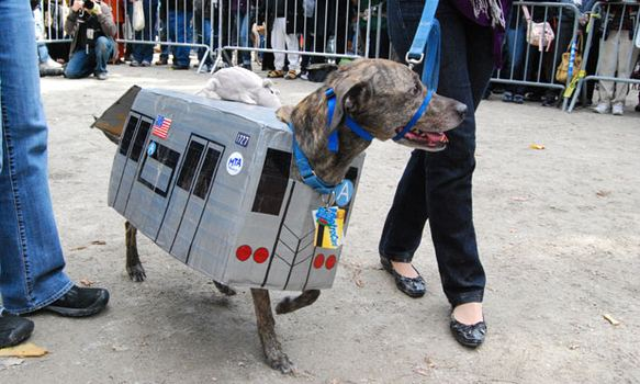 Diesel, who was dressed up as the A Train with a rat on its roof, also got an award.