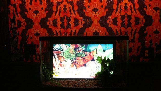 Brooklyn Artist Nancy Drew designed this wallpaper in the back of the bar. Donald O'Finn created this fishtank video art.