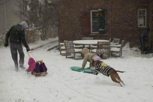 The Emery family goes sledding with dog Cola early Saturday in Yonkers, NY.