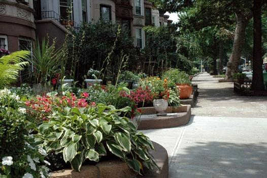 """Brooklyn\'s \""""greenest block.\"""""""