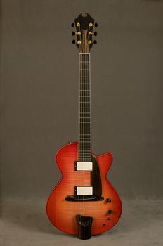 This solid body electric guitar was commissioned by musician Steve Miller and build by his friend James D'Aquisto in 1994.