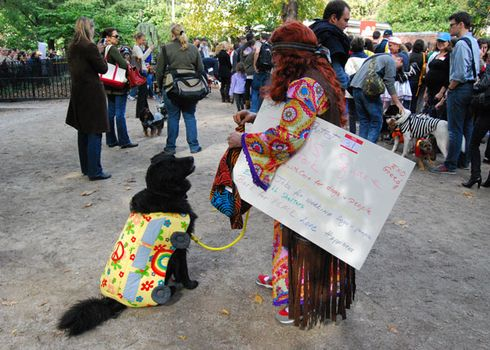 A dog and owner dressed as a flower power bus and a flower child wait in line to get into the dogpark. Admission to the show cost $5.