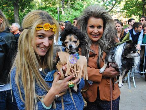 These dogs were dressed up as Jimi Hendrix and one of his groupies.