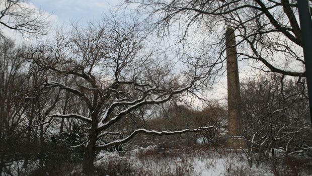 The Parks Department and the Central Park Conservancy have pruned some of the trees around the obelisk so Cleopatra's Needle can be seen and is not damaged by falling branches.