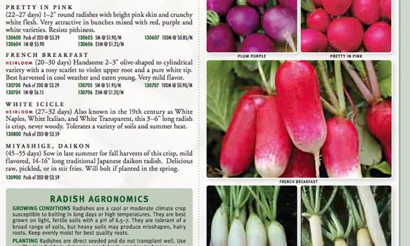 "When I see a radish named ""French Breakfast"" and another radish named ""White Icicle,"" I forget that I don't like radishes and just want to buy the seeds.  Seeds of Change 2011 catalog."