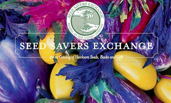 "Nothing screams ""sow me"" like these multi-colored eggplants on the cover of the 2011 Seed Savers Exchange catalog."