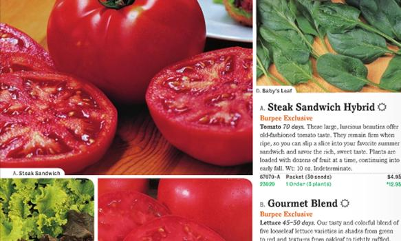 Pass me a napkin! Just looking at these customer favorites from the Burpee Gardening 2011 catalog makes my mouth water.