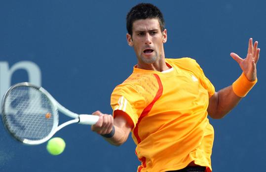 Novak Djokovic returns a shot against Fernando Verdasco.