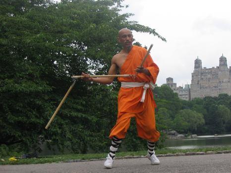 A shaolin martial artist