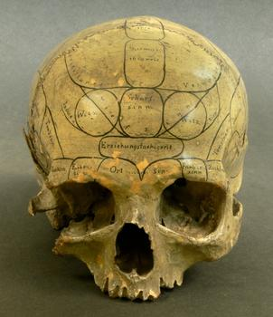 At 11 A.M., an Outer vs. Inner Space Slapdown will pit Carl Schoonover, whose book includes this shot of human skull inscribed by a 19th-century phrenologist, against image archivist Michael Benson.
