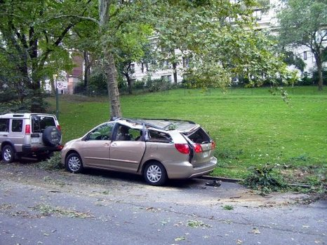 Storm debris in Riverside Park