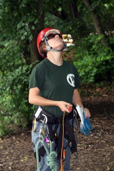 Jackie Beebe, USDA tree inspector