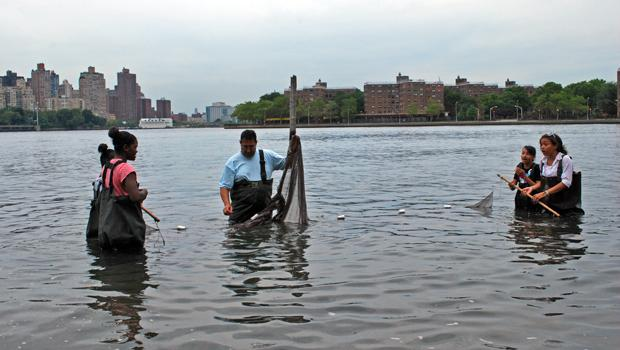 Green Girls wading in the East River