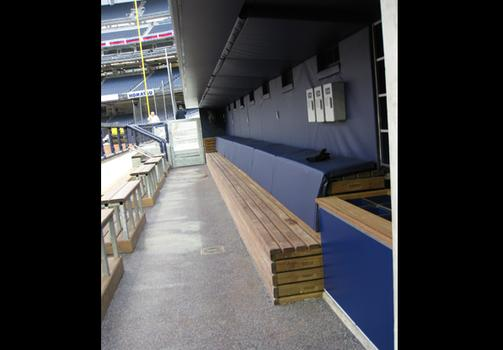The dugout