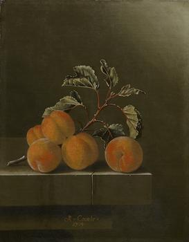 Adriaen Coorte. Still Life with Five Apricots, 1704.