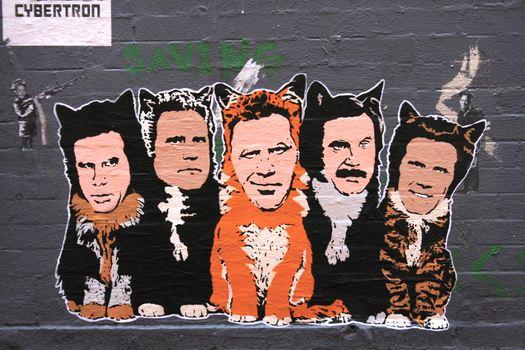 Ferrell Cats. NYC