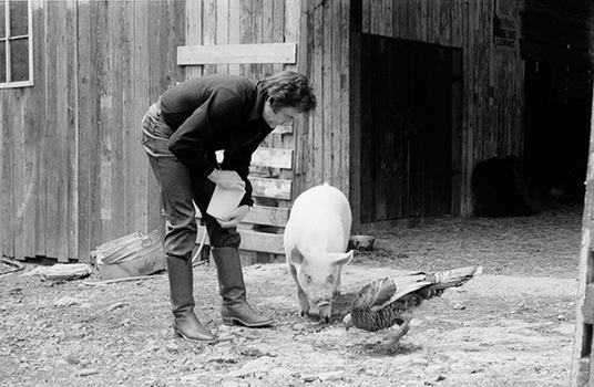 J.R. Cash, Snorkle the Pig, and Theodore the Turkey on the Farm, 1982. Archival pigment print.