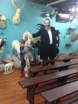 The Rabbi greets Manoush Zomorodi's family at the Torah Animal World in Boro Park.