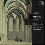 Bach Motets - Academy of Ancient Music Berlin, RIAS Chamber Choir