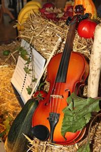 Thanksgiving fiddle