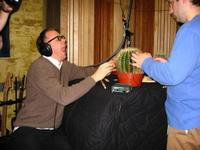 How to play a cactus Studio 360